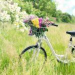 自転車で下半身の悩み解消!ダイエット効果を高める乗り方はこれだ!