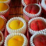 今が一番おいしい!桃をダイエット中に賢く食べるには?