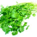 人気の野菜、パクチーの効能とは?