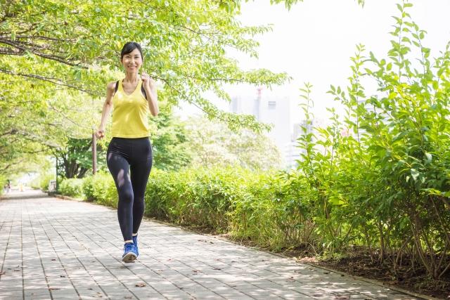 毎朝のウォーキングで痩せる体に! 健康的なダイエットのススメ!