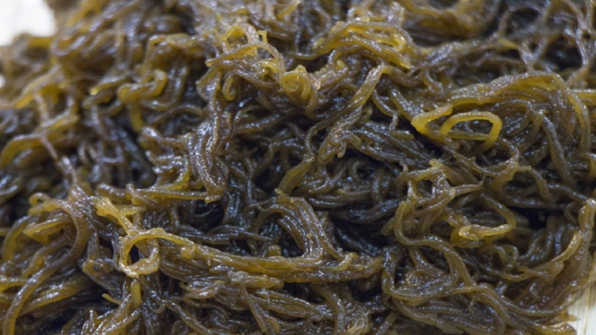 もずくダイエットで腸内がスッキリ!? おいしく痩せる海藻パワー!